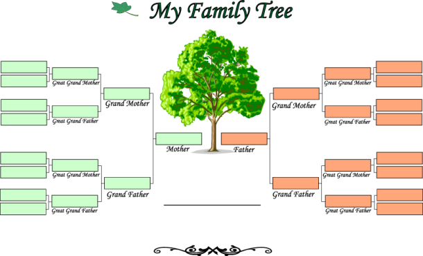 My Family Tree U3A