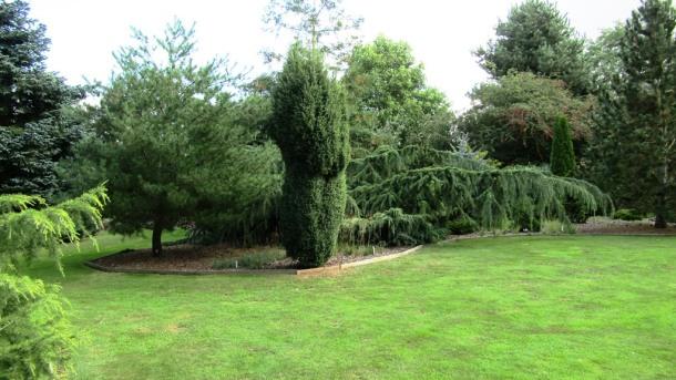 Breezy Knees Gardens Set 2019 (6)